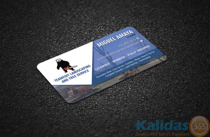 v-card1